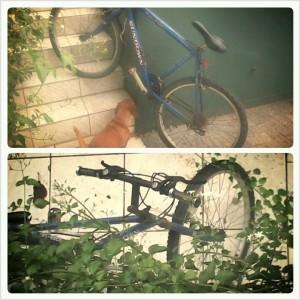 bike-academia-economia